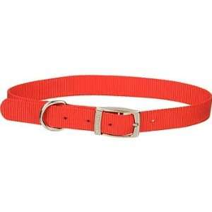 1 Single Ply Nylon Dog Collar in Red