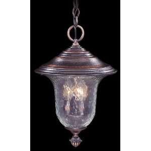 8326 SBR Framburg Lighting Carcassonne Collection lighting