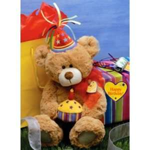 Special Day Birthday Teddy Bear Plush Stuffed Animal Toys & Games