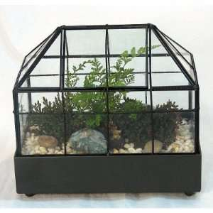 Long Gothic House Terrarium (Wardian Case) with Access
