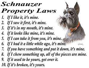GIANT SCHNAUZER PROPERTY LAWS OF THE DOG T SHIRT  S M L XL 2XL 3XL
