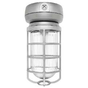 Vaporproof CFL Ceiling 32W Quad Tap with Glass Globe