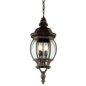 Trans Globe 4067 RT 4 Light Hanging Outdoor Pendant